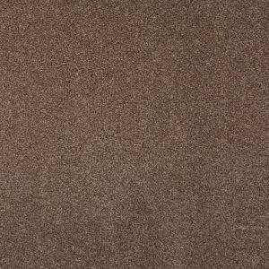 Splendid Beige 825 Carpet