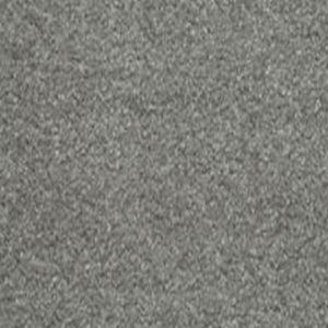 Delectable 01 Dainty Grey Carpet