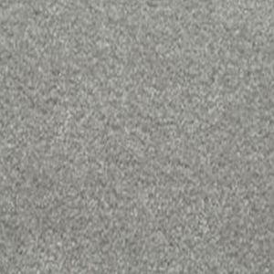 Delectable 03 Delightful Light Grey Carpet