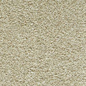 Enchanting Exclusive 10 Tantalising Dark Beige Carpet