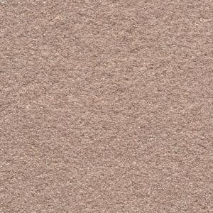 Enticing 01 Appealing Dark Beige Carpet