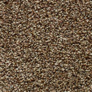 Evolution Saxony 02 Chocolate Truffle Dark Beige Carpet
