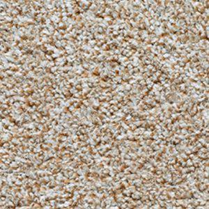 Evolution Saxony 08 Soft Feather Dark Beige Carpet