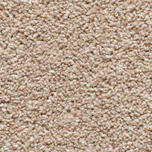 Evolution Saxony 09 Warm Sand Dark Beige Carpet