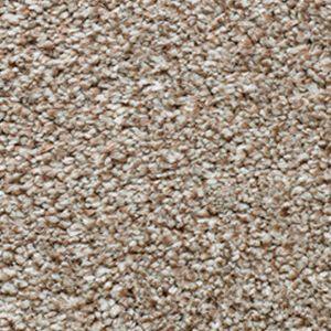 Evolution Saxony 10 White Pepper Dark Beige Carpet