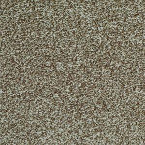 Exquisite Exclusive 12 Wonderful Light Beige Carpet