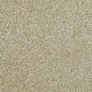 Delectable 08 Inviting Light Beige Carpet