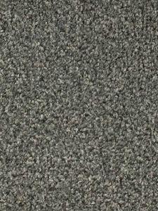 Valencia 02 Platinum Grey Twist Carpet