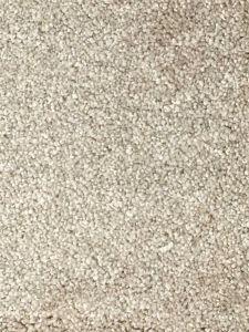 Pisa 08 Beige Bleach Cleanable Twist Pile Carpet