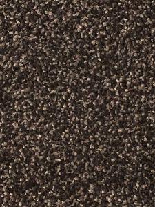 Lisbon 15 Dark Brown Twist Carpet